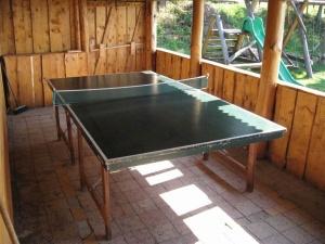 ping pong stol